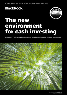 BlackRock: The new environment for cash investing