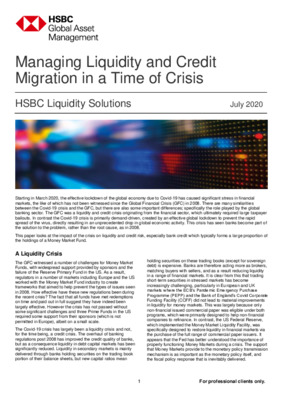 HSBC Global Asset Management: Managing liquidity and credit migration in a time of crisis
