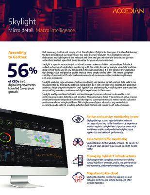 Accedian Skylight Micro detail. Macro intelligence.
