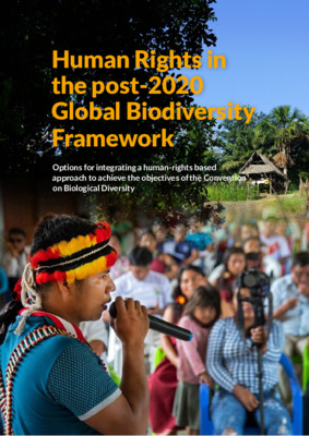 Human Rights in the post 2020 Global Biodiversity Framework