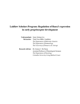 Laidlaw Summer I Report: Regulation of Runx3 expression in early proprioceptor development
