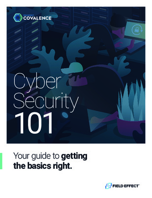Field Effect - Cyber Security 101 eBook