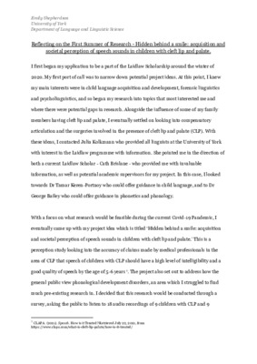 Reflective Report - Summer 1