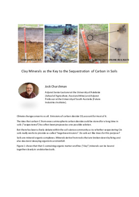 Clay Minerals as the Key to the Sequestration of Carbon in Soils
