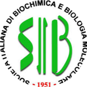 Go to the profile of SIB - Junior Section