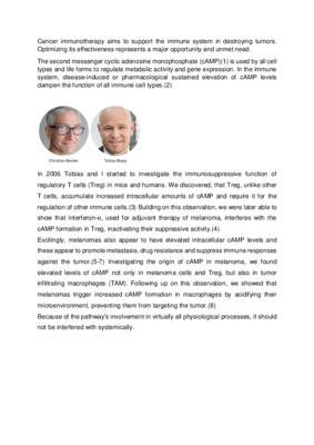 Preserving anti melanoma immunity by nanoparticle-mediated cAMP repression