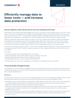 Whitepaper: Efficiently manage data to lower costs - and increase data protection