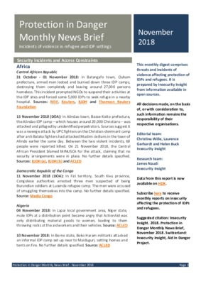 Protection in Danger Monthly News Brief  | November 2018