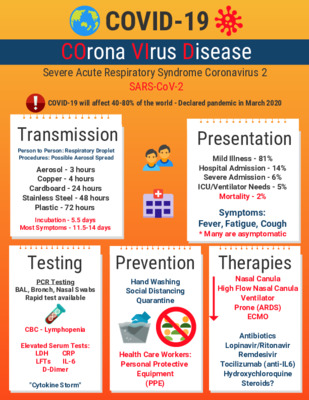 Infographic Guide to COVID-19